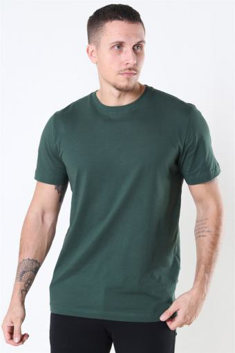Norman 180 SS O-Neck T-shirt Sycamore