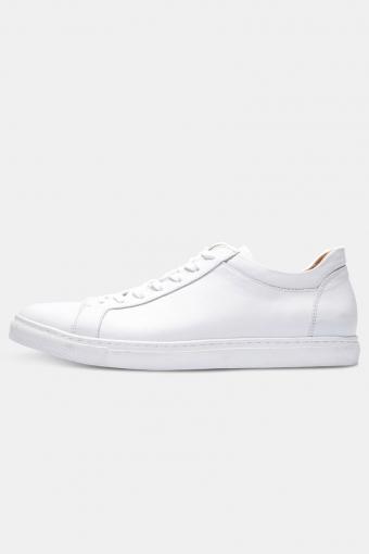 ShnDavid Sneaker Noos White