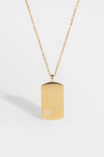 Vegvisir Tag Halskette Guld